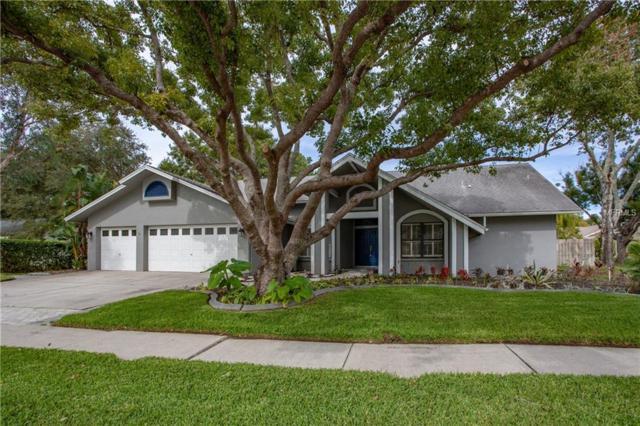 1545 Virginia Avenue, Palm Harbor, FL 34683 (MLS #U8020412) :: Delgado Home Team at Keller Williams