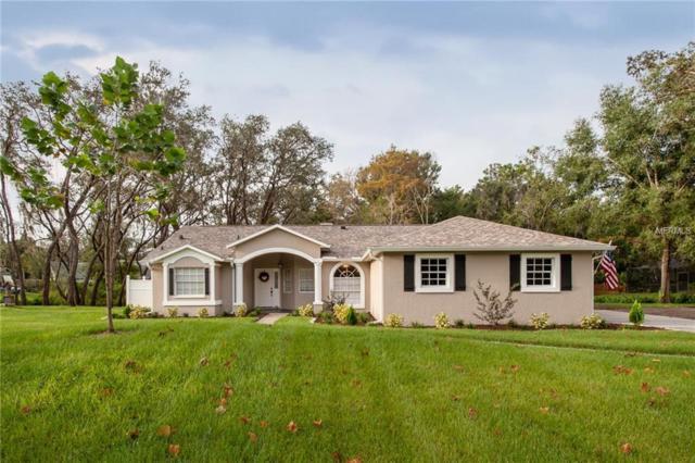 6710 Ridge Top Drive, New Port Richey, FL 34655 (MLS #U8020614) :: SANDROC Group