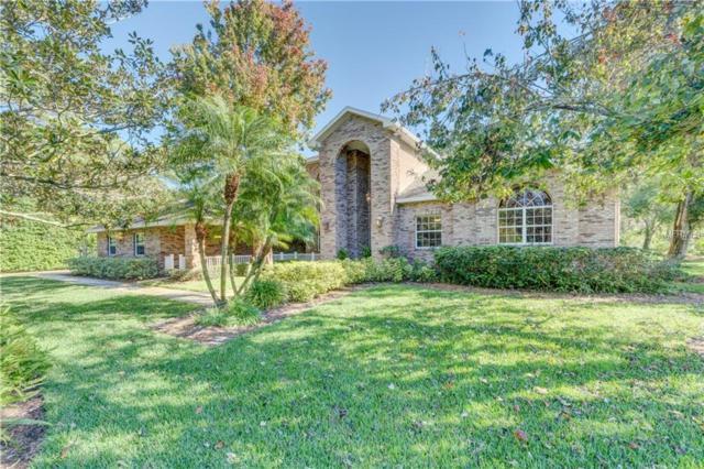 1675 Sunnybrook Lane, Clearwater, FL 33764 (MLS #U8021013) :: Burwell Real Estate