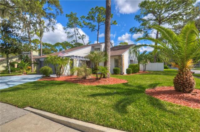 12901 Brushy Pine Place, Tampa, FL 33624 (MLS #U8023013) :: Medway Realty