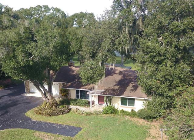 5614 Puritan Road, Tampa, FL 33617 (MLS #U8023086) :: The Duncan Duo Team