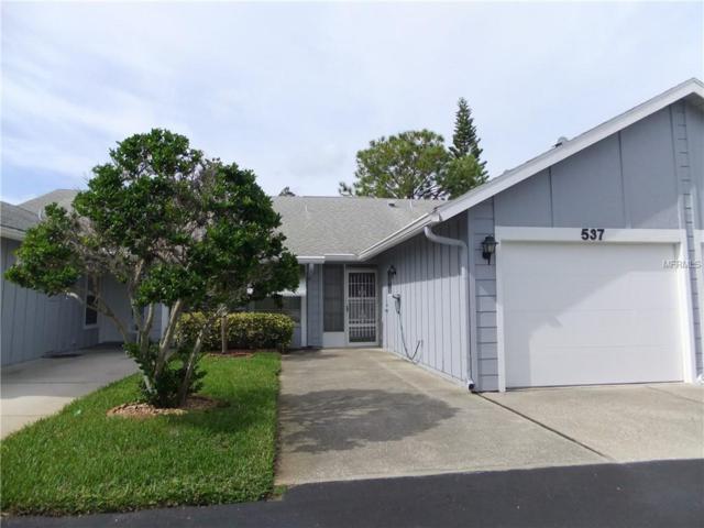 537 Natingham Close, Palm Harbor, FL 34683 (MLS #U8023436) :: The Duncan Duo Team