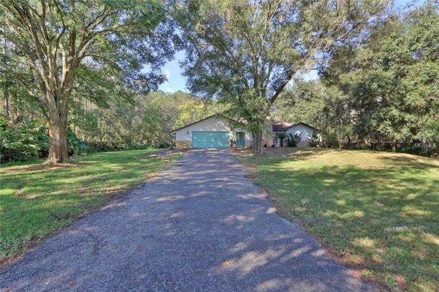 17801 Deerfield Drive, Lutz, FL 33558 (MLS #U8024016) :: Delgado Home Team at Keller Williams