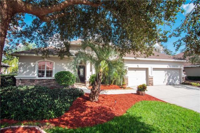 1444 Parilla Circle, Trinity, FL 34655 (MLS #U8024157) :: Delgado Home Team at Keller Williams