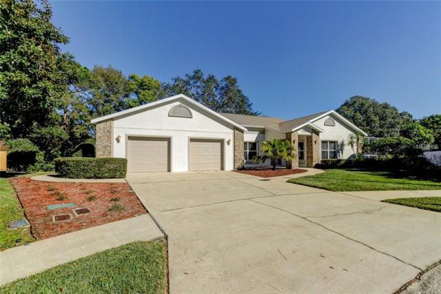 1356 Rollingwood Court, Tarpon Springs, FL 34689 (MLS #U8026834) :: Team Virgadamo