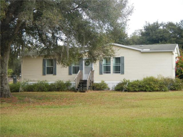 17305 Simmons Road, Lutz, FL 33548 (MLS #U8027152) :: Team Bohannon Keller Williams, Tampa Properties