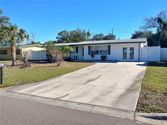 2190 Morningside Drive, Safety Harbor, FL 34695 (MLS #U8030462) :: Paolini Properties Group