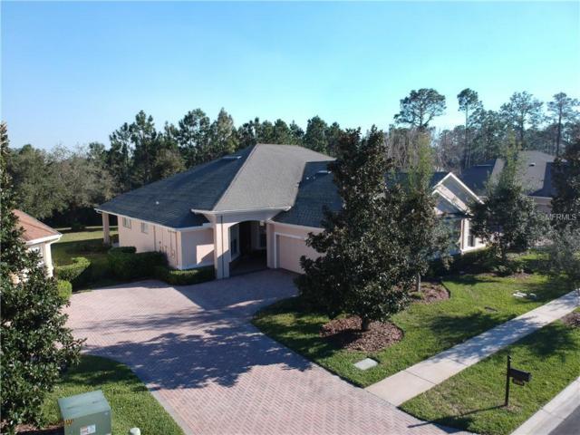 27414 Mistflower Drive, Wesley Chapel, FL 33544 (MLS #U8030591) :: Griffin Group