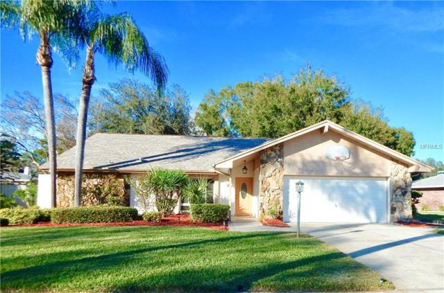 20 Citrus Court, Palm Harbor, FL 34683 (MLS #U8031154) :: Delgado Home Team at Keller Williams