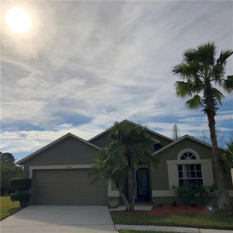Address Not Published, Tampa, FL 33626 (MLS #U8031292) :: Team Bohannon Keller Williams, Tampa Properties