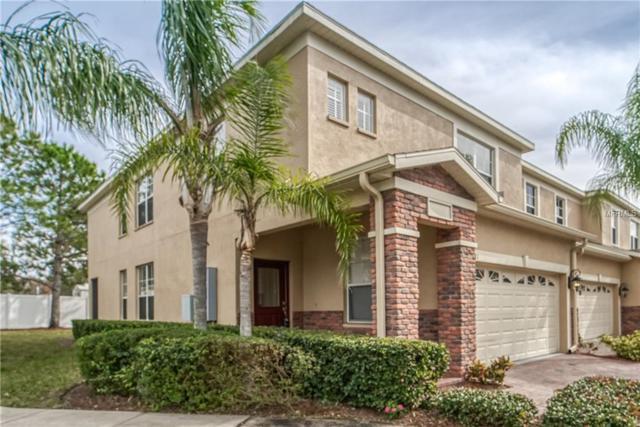 1581 Hillview Lane, Tarpon Springs, FL 34689 (MLS #U8032832) :: Cartwright Realty
