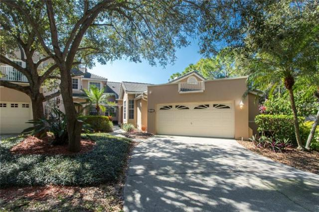 5093 White Pine Circle NE, St Petersburg, FL 33703 (MLS #U8034196) :: Lovitch Realty Group, LLC