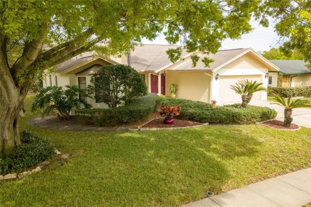 1011 Ridge Drive, Palm Harbor, FL 34683 (MLS #U8034598) :: Delgado Home Team at Keller Williams