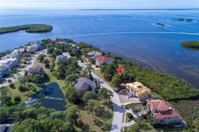 2007 Harbour Watch Circle, Tarpon Springs, FL 34689 (MLS #U8034839) :: The Duncan Duo Team
