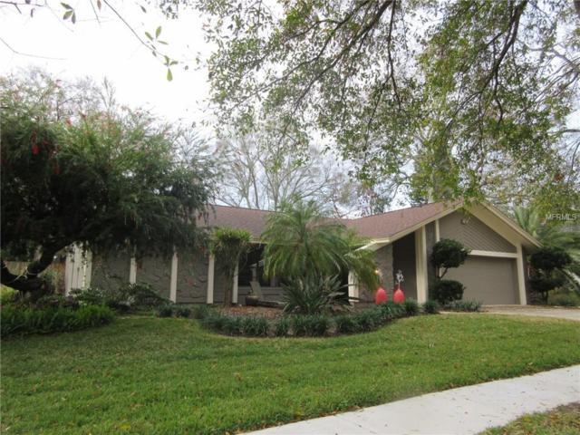 1248 Eniswood Parkway, Palm Harbor, FL 34683 (MLS #U8034932) :: RE/MAX CHAMPIONS