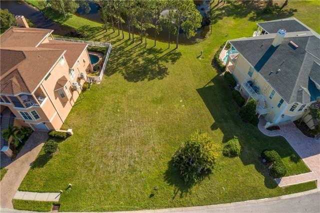 2068 N Pointe Alexis Drive, Tarpon Springs, FL 34689 (MLS #U8035224) :: The Duncan Duo Team