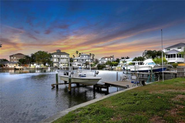 126 Carlyle Circle, Palm Harbor, FL 34683 (MLS #U8035706) :: Premium Properties Real Estate Services