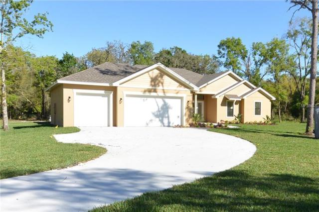 17907 Simmons Rd, Lutz, FL 33548 (MLS #U8037024) :: Delgado Home Team at Keller Williams