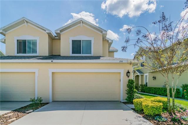 250 N Harbor Drive, Palm Harbor, FL 34683 (MLS #U8038556) :: Griffin Group