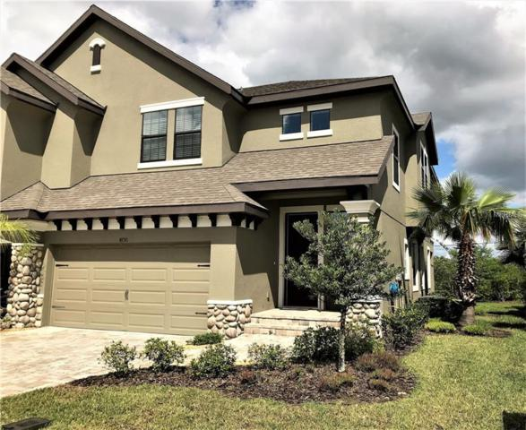 4790 Wandering Way, Wesley Chapel, FL 33544 (MLS #U8039354) :: Cartwright Realty