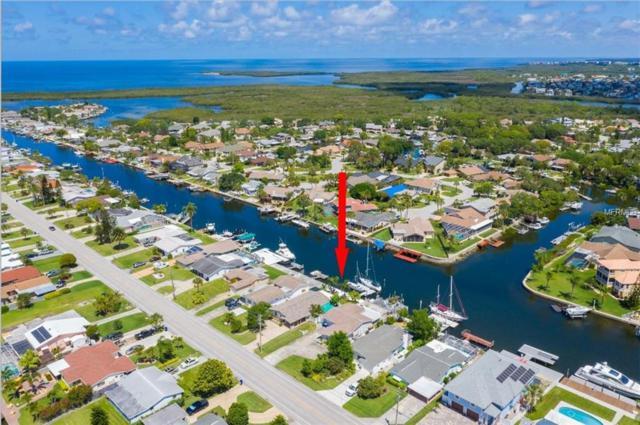 4237 Floramar Terrace, New Port Richey, FL 34652 (MLS #U8040325) :: Delgado Home Team at Keller Williams