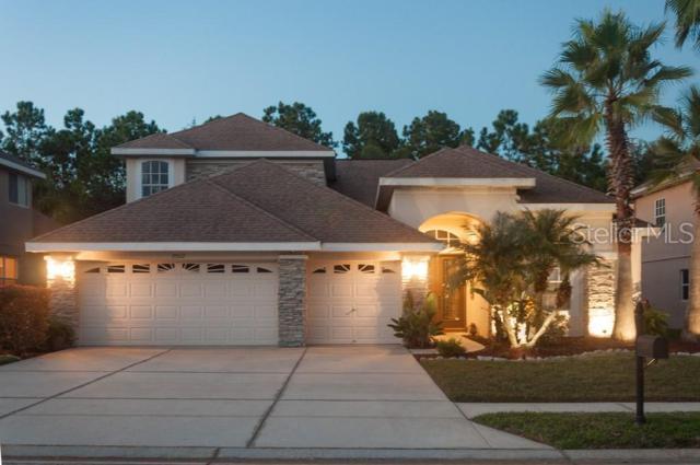 23517 Vistamar Court, Land O Lakes, FL 34639 (MLS #U8040562) :: Bustamante Real Estate
