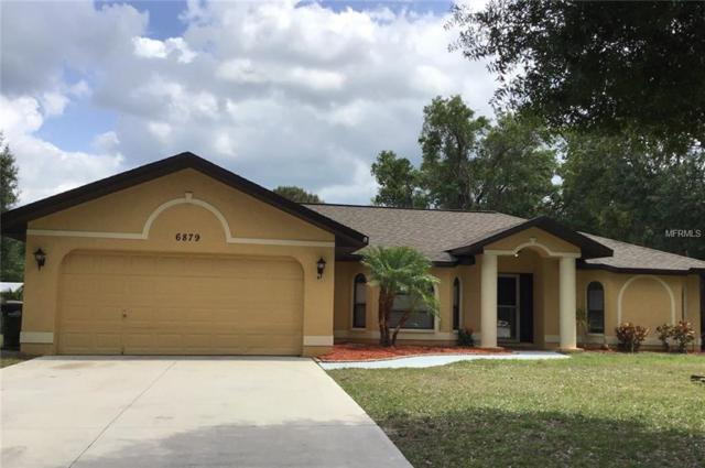 6879 Locher Road, North Port, FL 34291 (MLS #U8041247) :: Burwell Real Estate