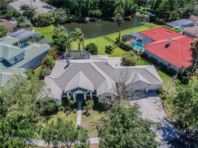 16341 Heathrow Drive, Tampa, FL 33647 (MLS #U8041591) :: Medway Realty