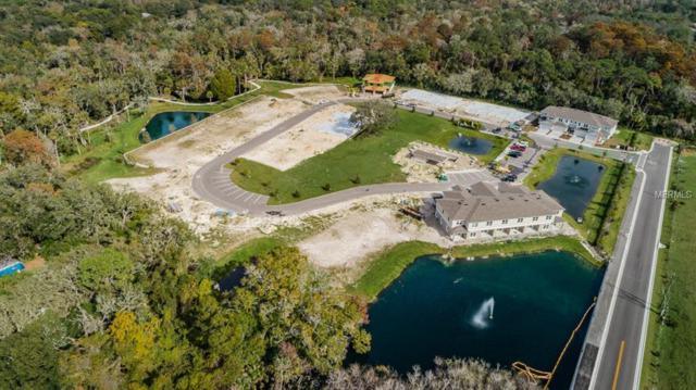 5330 Riverwalk Preserve Drive, New Port Richey, FL 34653 (MLS #U8041809) :: Lock & Key Realty