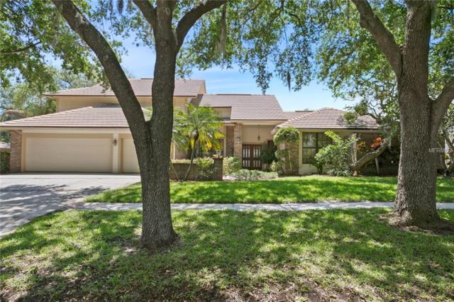 3468 Shoreline Circle, Palm Harbor, FL 34684 (MLS #U8042146) :: Paolini Properties Group