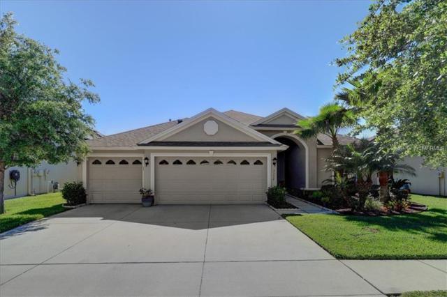 3332 Diamond Falls Circle, Land O Lakes, FL 34638 (MLS #U8042217) :: Premium Properties Real Estate Services