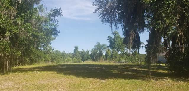 17041 Comunidad De Avila, Lutz, FL 33548 (MLS #U8042911) :: Southern Associates Realty LLC