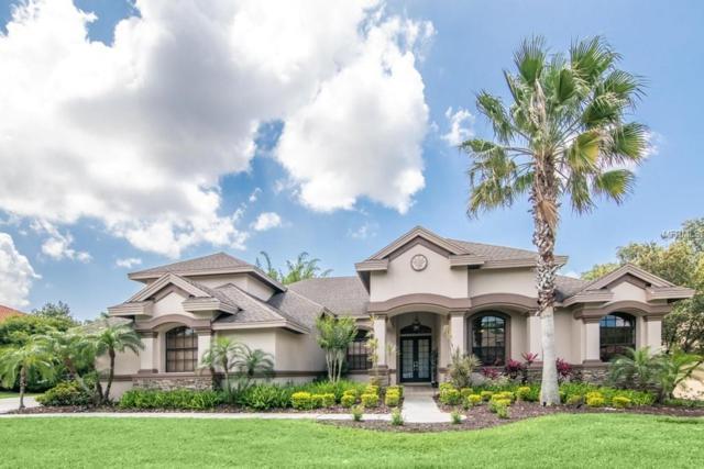 1655 Canopy Oaks Boulevard, Palm Harbor, FL 34683 (MLS #U8043465) :: Delgado Home Team at Keller Williams