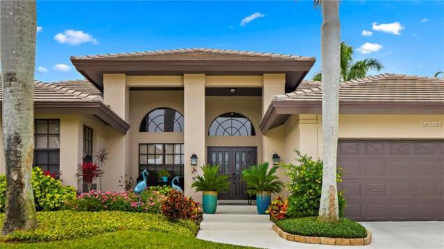 6095 Leeland Street S, St Petersburg, FL 33715 (MLS #U8043731) :: Team Bohannon Keller Williams, Tampa Properties