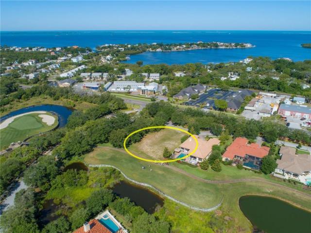 Douglas Place, Palm Harbor, FL 34683 (MLS #U8043921) :: Delgado Home Team at Keller Williams