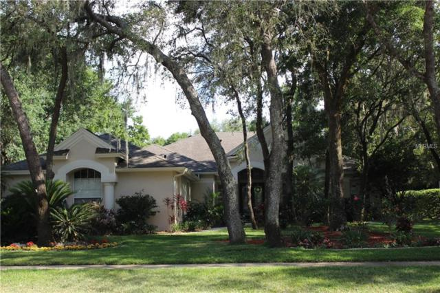6021 Hammock Hill Avenue, Lithia, FL 33547 (MLS #U8044376) :: The Brenda Wade Team