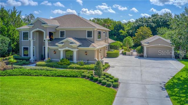 6201 Guilford Drive, New Port Richey, FL 34655 (MLS #U8044469) :: The Duncan Duo Team