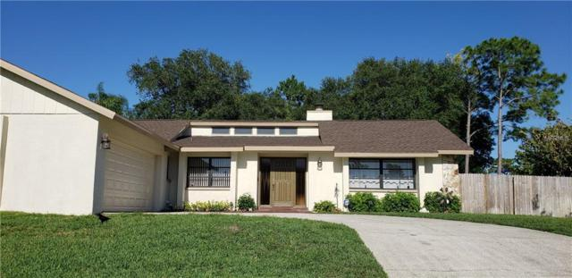 3901 Erne Street, Palm Harbor, FL 34683 (MLS #U8044812) :: Team Bohannon Keller Williams, Tampa Properties