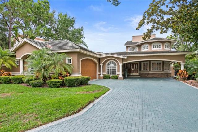 136 Carlyle Drive, Palm Harbor, FL 34683 (MLS #U8045514) :: Premium Properties Real Estate Services