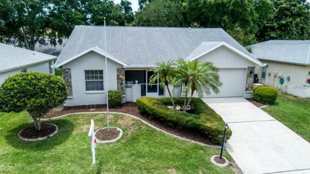 3576 Oak Lake Drive, Palm Harbor, FL 34684 (MLS #U8046000) :: Burwell Real Estate