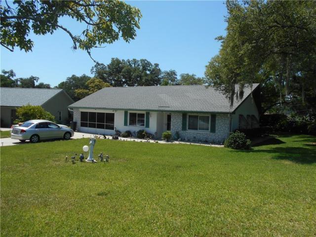 3372 Brodie Way, Palm Harbor, FL 34684 (MLS #U8046077) :: Delgado Home Team at Keller Williams