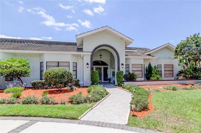 4012 Wellington Parkway, Palm Harbor, FL 34685 (MLS #U8047154) :: Delgado Home Team at Keller Williams