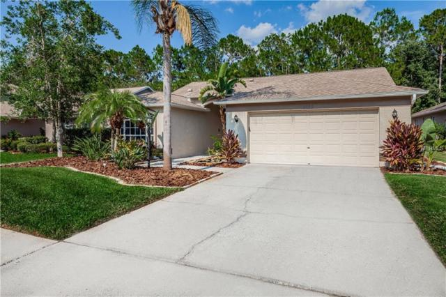 1623 Bayhill Drive, Oldsmar, FL 34677 (MLS #U8047493) :: The Duncan Duo Team