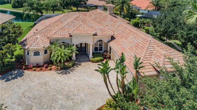 10223 Pontofino Circle, Trinity, FL 34655 (MLS #U8047500) :: The Brenda Wade Team