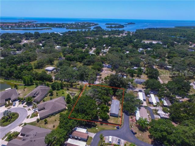 1138 Calvary Road, Holiday, FL 34691 (MLS #U8048619) :: The Duncan Duo Team