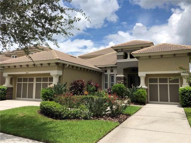 14721 San Marsala Court, Tampa, FL 33626 (MLS #U8051424) :: Andrew Cherry & Company