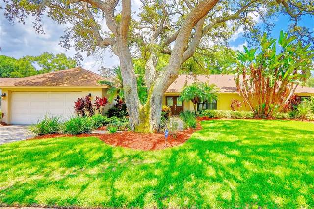 9921 Frank Drive E, Seminole, FL 33776 (MLS #U8051464) :: Charles Rutenberg Realty