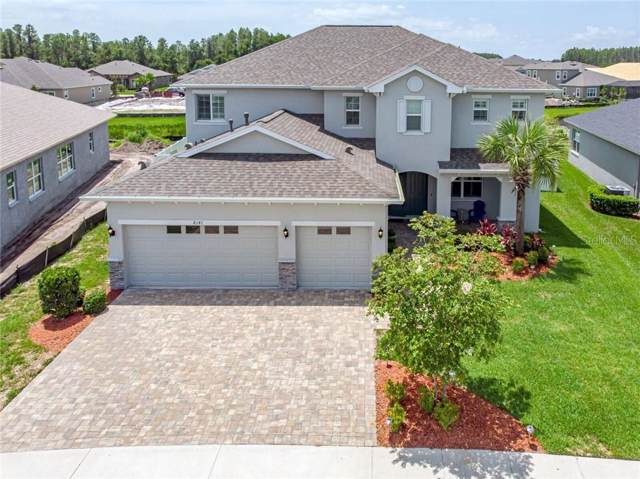 8141 Carlton Ridge Drive, Land O Lakes, FL 34638 (MLS #U8052132) :: Bustamante Real Estate