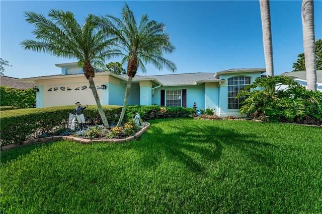 772 Brittany Park Boulevard, Tarpon Springs, FL 34689 (MLS #U8052315) :: Team Bohannon Keller Williams, Tampa Properties