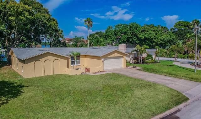 104 Carlyle Circle, Palm Harbor, FL 34683 (MLS #U8052348) :: The Nathan Bangs Group